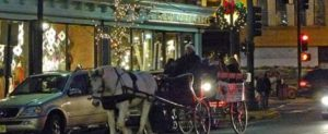 Holiday Horse & Wagon Rides @ Red Bank | New Jersey | United States