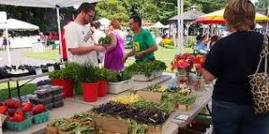 West Cape May Farmers Market @ West Cape May Borough Hall